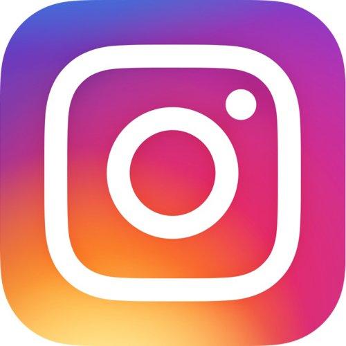 Instagram: DIESE Bilder werden bevorzugt! | BRAVO