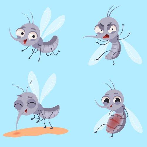 Mückenstich: Warum manche zerstochen werden – und andere nicht | BRAVO
