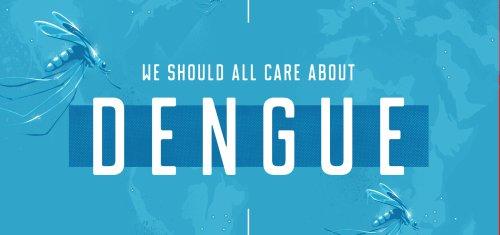 Dengue finds its voice