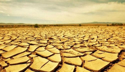 The world will face record heat in the coming decades | Natural Disasters