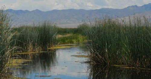 Federal Government Expands Hunting, Fishing Access At National Wildlife Refuges