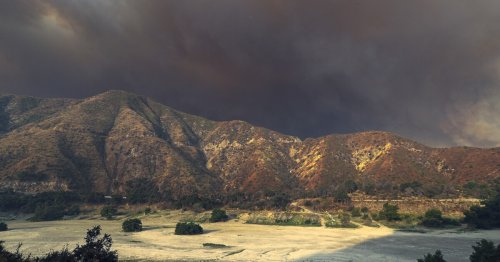Highway 1, 30 state parks and 18 national forests in California now closed: What you need to know