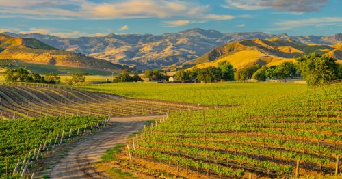 Santa Ynez Valley elevates its profile with high-end lodging and dining