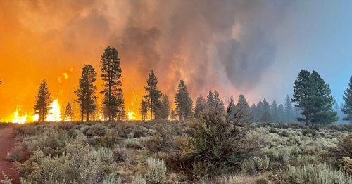 How an Oregon wildfire almost derailed California's power grid