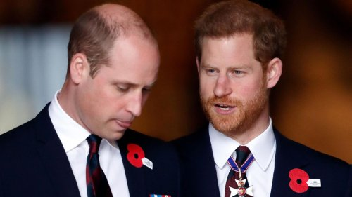 Diese Sätze von William und Harry lassen aufhorchen