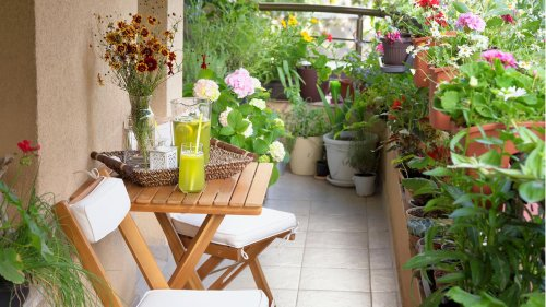 Mit diesen Tipps verwandelst du deinen Balkon in ein Blumenparadies