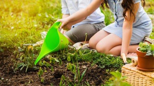 5 Tipps, die Essig im Garten zu einem wahren Wundermittel machen