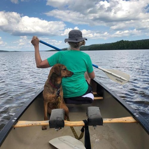 Fido's Summer Road Trip: Lakes Edition