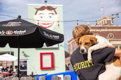Music to Fido's Ears: 8 Dog-Friendly Live Music Venues