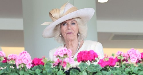 Camilla's future royal title lies in Prince William's hands