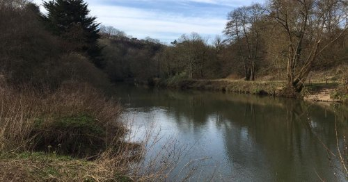 People 'puking up all day' after swimming in Bristol waters