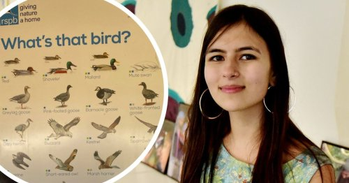 Bird charity to change posters following claims they're 'sexist'