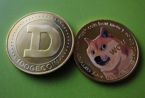 Nobody Should Be Surprised By The U.S. States Reportedly Most Dogecoin-Crazed