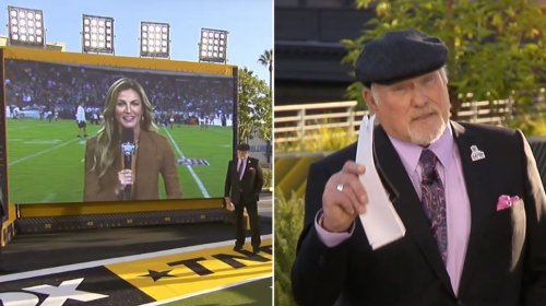 Are people overreacting to Terry Bradshaw's quip about Erin Andrews appearance?
