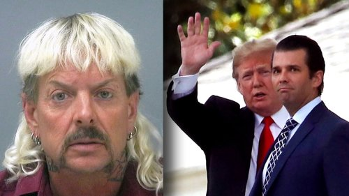 Donald Trump Jr. Gets Hilariously Mocked For Comparing His Dad To Convicted Felon Joe Exotic