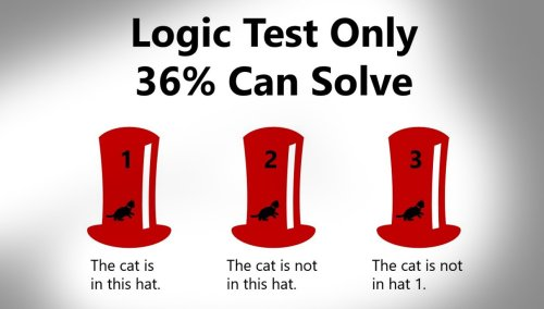 64 Percent Of People Can't Solve This Simple 'Cat In The Hat' Logic Test
