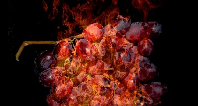 Did You Know Grapes Burst Into Flames, Spit Plasma If Cooked In The Microwave? Here's Why