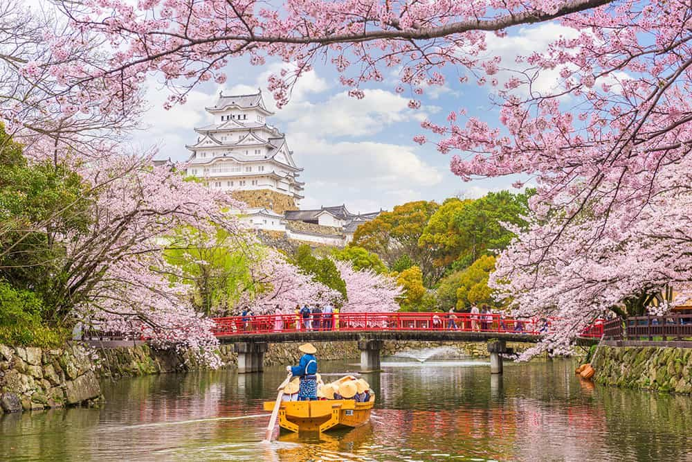 THE MOST BEAUTIFUL CHERRY BLOSSOMS AROUND THE WORLD