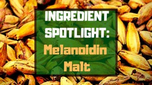 Ingredient Spotlight: Melanoidin Malt
