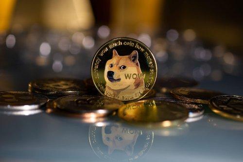 Dogecoin (DOGE): Support von AMC und Elon Musk
