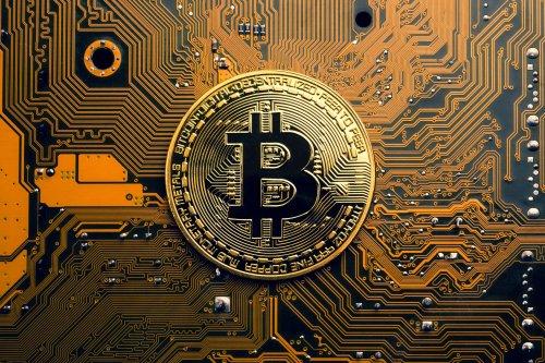 5 Sätze, die ein Bitcoin-Maximalist niemals sagen würde