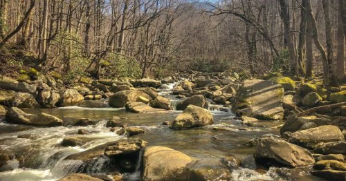 The budget guide to Great Smoky Mountains National Park | Budget Travel