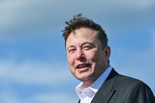"""Nach 13-Prozent-Aktien-Sprung: Musk lobt deutsche Autobauer, sie """"werden sich stark erholen, sie haben großes Talent"""""""