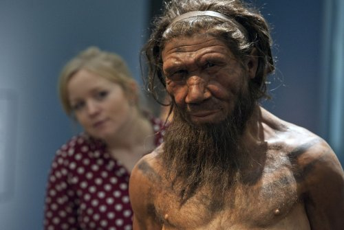 Forscher haben die Blutgruppen von Neandertalern analysiert – die Urzeitmenschen besaßen Blutgruppenfaktoren, die uns heute fehlen