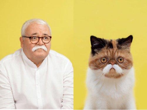 Diese Katzen sehen genauso aus wie ihre Besitzer