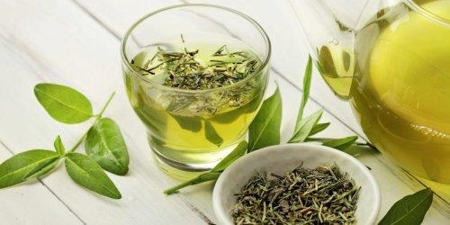 Wie grüner Tee eurem Gedächtnis, eurer Haut und eurer Herzgesundheit guttut