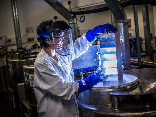 Bis zu 700.000 Dollar im Jahr: Diese Biotech- und Pharmaunternehmen wachsen am schnellsten — und zahlen ihren Mitarbeitern die höchsten Gehälter