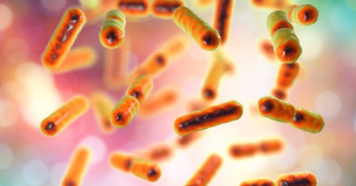 Should I test my gut microbes to improve my health?