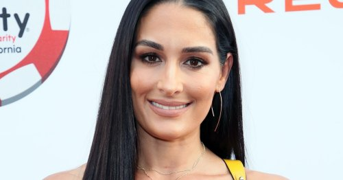 Nikki Bella's Response To Fans Commenting On Her Post-Pregnancy Body Needed To Be Said