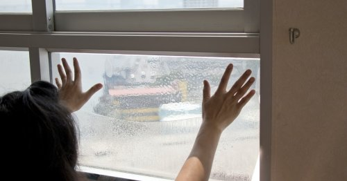 Forget Curtains — This Window Film Gives You Privacy Without Blocking Out Natural Light