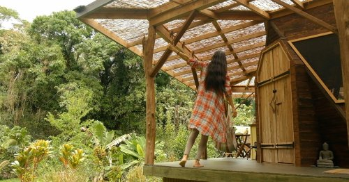 This Couple Built An Incredible Tree Home Off-The-Grid In Hawaii