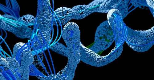 DeepMind promises to identify the shapes of every protein in the human body, a potential medical breakthrough