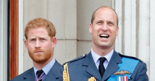 Prince William & Harry Will Not Walk Together At Philip's Funeral Procession