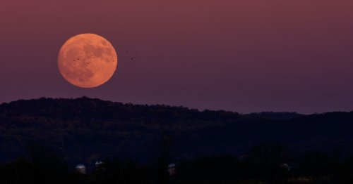 Your Guide To Surviving June's Full Strawberry Moon