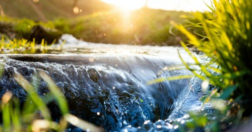 Rights for nature: How granting a river 'personhood' could help protect it