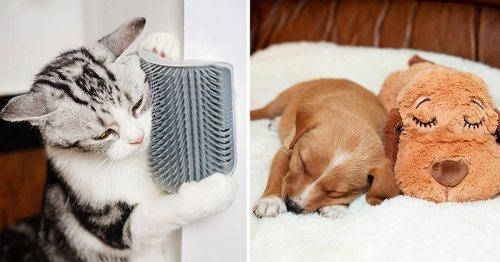 If Your Pets Could Talk, They'd Be Begging To You Buy These 40 Things
