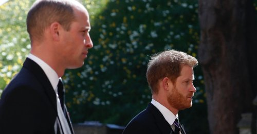 William & Harry Reunited At Prince Philip's Funeral & The Pics Are So Moving