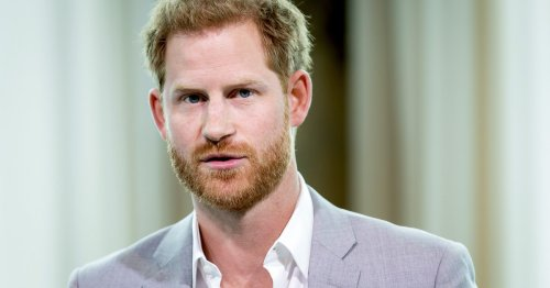 Prince Harry's HRH Title Was Removed From A Diana Exhibit At The Palace