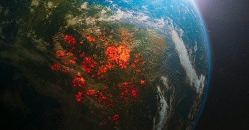 A form of life crucial for human survival may be disappearing