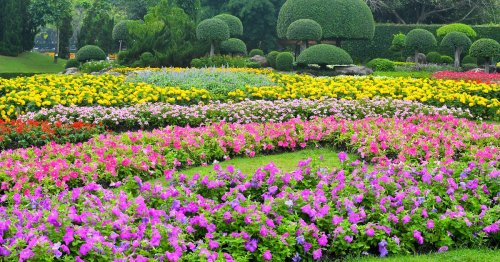 Check Out These 17 Breathtaking Gardens For Inspiration For Your Own Backyard