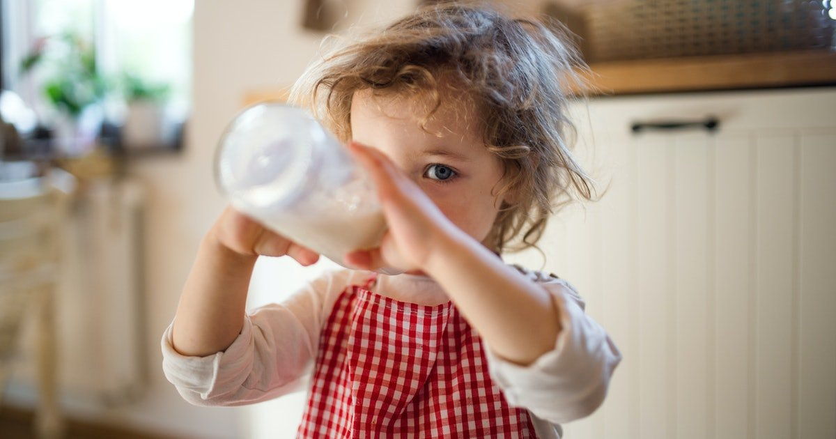 What You Need To Know About Cow's Milk Alternatives For Toddlers