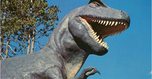 How many T. rexes ever lived? The answer is way higher than you think