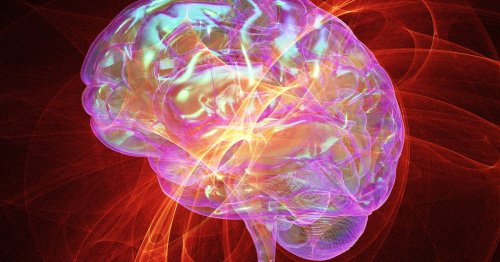 Theta waves and chill: How music rewards the brain