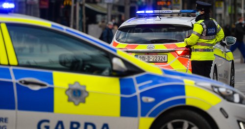 Man (20s) arrested over armed dognapping incident in Cork