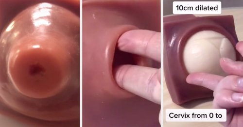 This Midwife Is Going Super Viral For Her Demonstrations On All Things Related To The Female Body
