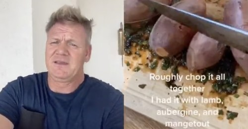 I'm Obsessed With Gordon Ramsay Calling Out People Making Bad Food On TikTok